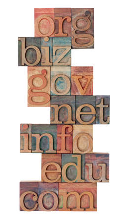 biz: collage of popular internet domain extensions (org, biz, gov, net, info, edu, com) - vintage wooden letterpress printing blocks, stained by color inks, isolated on white
