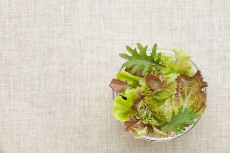 a glass bowls of green and red baby lettuce mix against tablecloth Stock Photo - 9614101