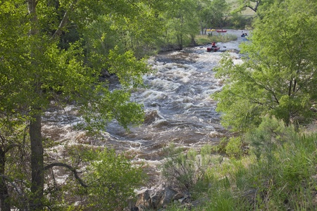 FORT COLLINS, COLORADO, USA - JUNE 4, 2011: White water rafters and kayakers approaching Maddog Rapid on Cache la Poudre River west of Fort Collins, Colorado as the snow pack in the high country begins to melt. Fort Collins, Colorado, June 4, 2011. Stock Photo - 9656864