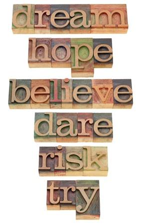 sogno: sogno, la speranza, credo, osare, rischiare, provare - un insieme di parole isolate motivazionali e spirituali in blocchi di legno d'epoca di stampa tipografica Archivio Fotografico