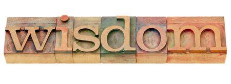 printing block block: wisdom - isolated word in vintage wood letterpress printing blocks