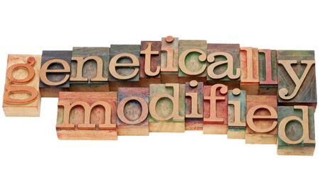 genetically modified - isolated text in vintage wood letterpress type Stok Fotoğraf