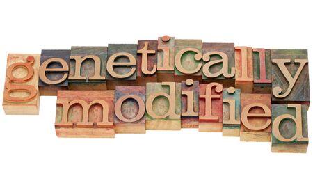 genetically modified: geneticamente modificati - testo isolato in legno di tipo vintage tipografica Archivio Fotografico
