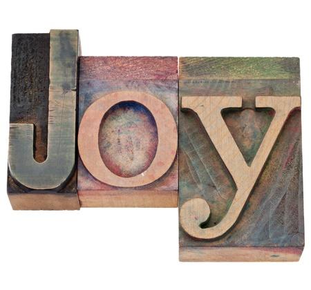기쁨 단어 - 빈티지 나무 활자 인쇄 블록에서 격리 된 텍스트