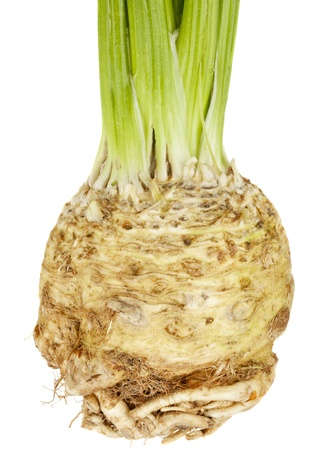 celery root (celeriac) isolated on white