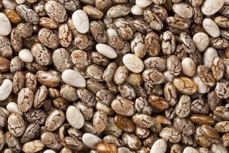 background of organic chia seeds rich in omega-3 fatty acids, two times life-size magnification photo