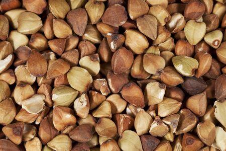 life-size macro of buckwheat kasha roasted whole grain Stock Photo - 11788284