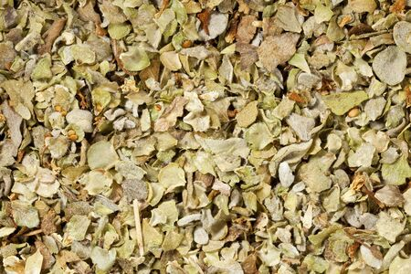 background of marjoram herb seasoning at life-size magnification Stock Photo - 11881309