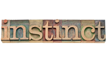 inclination: instinct - isolated text in vintage wood letterpress printing blocks, stained by color inks Stock Photo