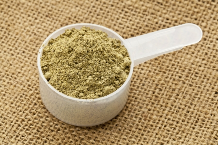 Scoop of raw organic hemp protein powder - super food rich in nutrients (proteins, antioxidants, amino and fatty acids) Stock Photo - 13134741
