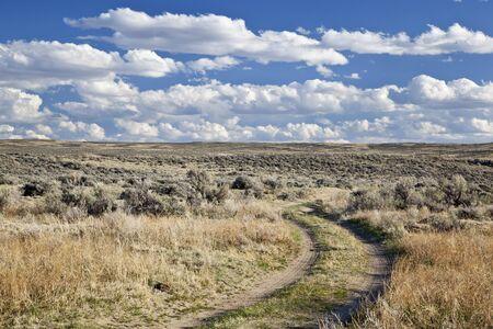 sagebrush: dirt road in sagebrush high desert north of Saratoga, Wyoming, early spring
