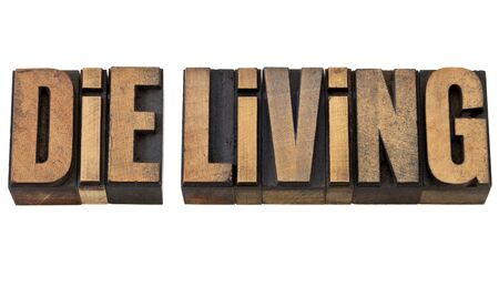 die living advice - isolated text in vintage letterpress wood type Stock Photo - 13604663