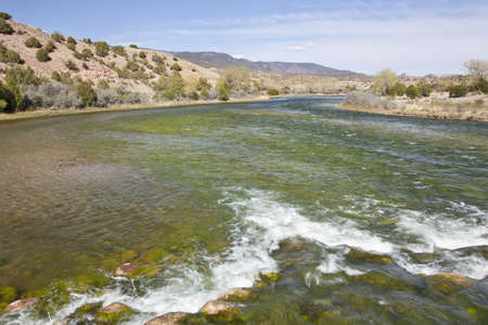 Green River at Bridge Hollow, Browns Park, Utah below Flaming Gorge Dam, springtime, looking downstream Stock Photo - 13671362