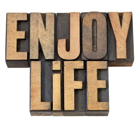 enjoy life - isolated text in vintage letterpress wood type Stock Photo - 13710245