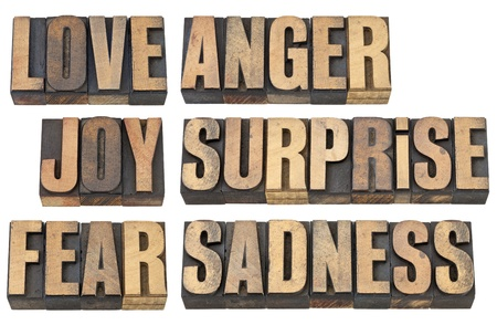 six basic emotions - love, fear, joy, anger, surprise and sadness - a collage of isolated words in vintage letterpress wood type Stock Photo - 14063493