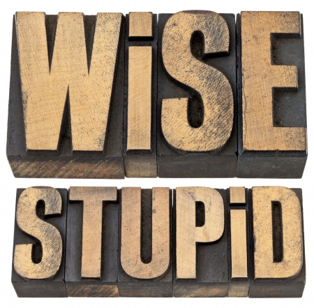 wise and stupid antonym - experience concept -- isolated text in vintage letterpress wood type Stock Photo - 14063494
