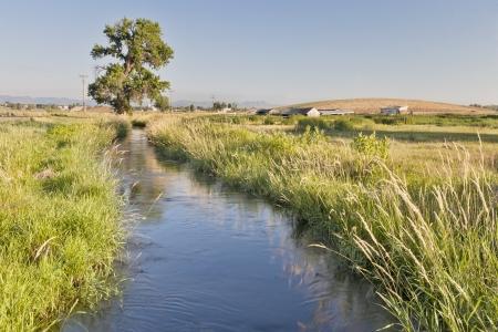 una zanja de irrigación en las tierras agrícolas de Colorado, cerca de Fort Collins, con las Montañas Rocosas en un horizonte de scenety verano, con la hierba verde