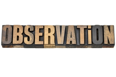 observation - isolated word in vintage letterpress wood type