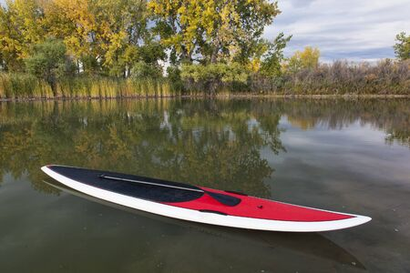 paddling: stand up paddleboard with paddle on a calm lake in fall scenery