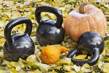 pumpkin leaves: three heavy iron  kettlebells outdoors in a fall scenery  with pumpkin and squash - outdoor fitness concept