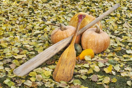 vintage canoe paddles with pumpkin and squash in autumn scenery Stock Photo - 16012808