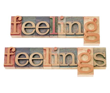 feeling and feelings words - isolated text  in vintage letterpress wood type Stock Photo - 16126193