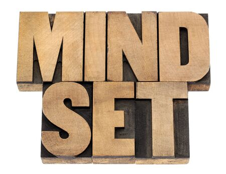 mindset - isolated phrase in vintage letterpress wood type blocks Stock Photo - 16429872