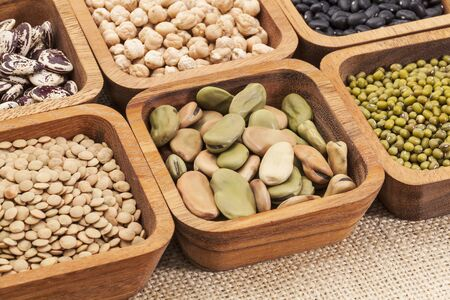 turtle bean: a collection of bean and lentil in wooden square bowls