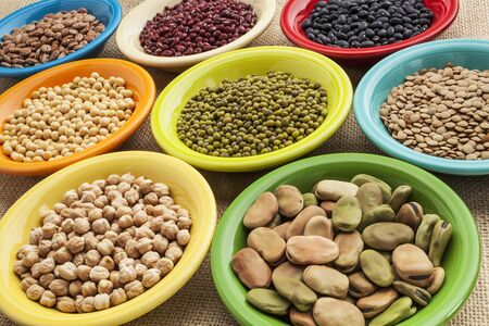 fava bean: variety of legumes (fava bean, mung bean, soy, green lentils, adzuki, black, pinto, chickpea) in colorful ceramic bowls on canvas