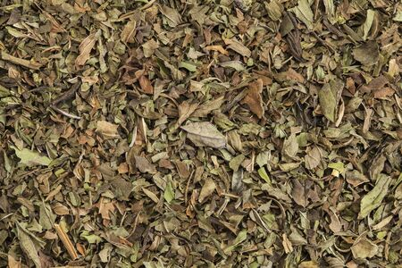 caffeine free: background texture of organic loose leaf peppermint tea Stock Photo