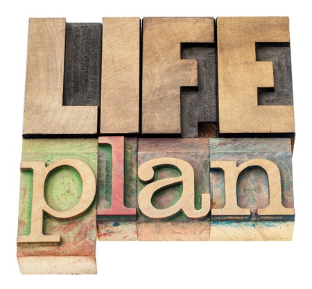 self development: life plan - isolated text in vintage letterpress wood type printing blocks Stock Photo
