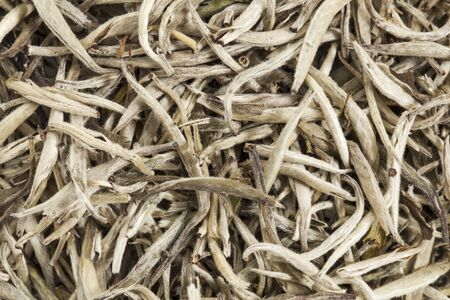 background texture of organic silver needle white tea Stock Photo - 17305830