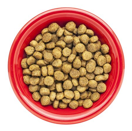 red bowl of dry dog food isolated on white