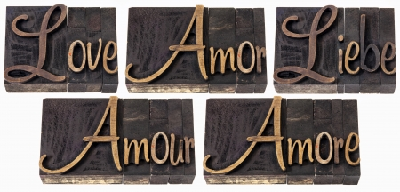 love word in 5 languages (English, Spanish, German, French and Italian) - a collage of isolated text in vintage letterpress wood type printing blocks, script font Stock Photo - 17447352