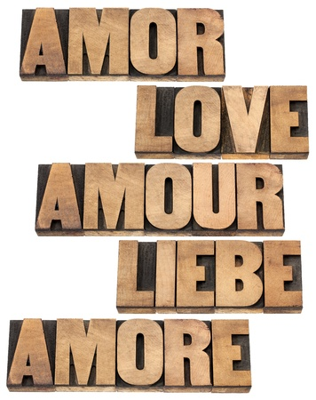 love word in 5 languages (English, Spanish, German, French and Italian) - a collage of isolated text in vintage letterpress wood type printing blocks, Stock Photo - 17530176