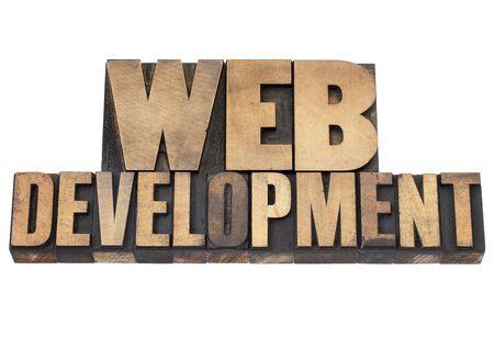 web development   - isolated text in vintage letterpress wood type printing blocks Stock Photo - 17530173
