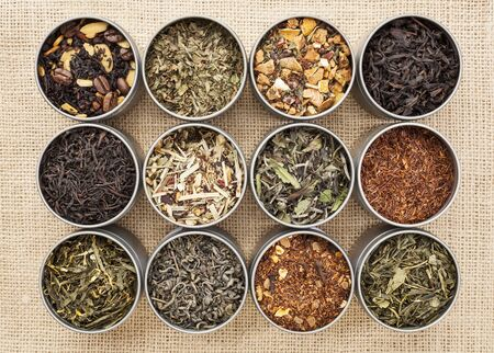 rooibos tea: samples of loose leaf green, white, black and herbal tea in metal cans on canvas background