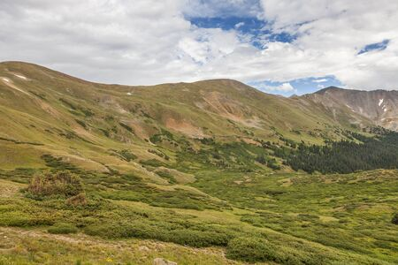 loveland pass: summer green alpine zone meadows of the Rocky Mountains at Loveland Pass, Colorado