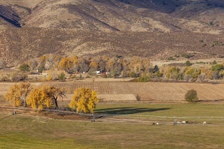 farmland at foothills of Rocky Mountains at Belvue near Fort Collins, Colorado; fall scenery at sunrise Stock Photo - 17959916