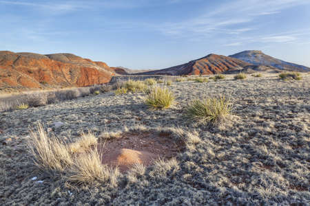 ant nest sand cone in high prairie surrounded by redstone mountains - Red Mountain Open Space near Fort Collins, Colorado, winter with dry grass and traces of snow Stock Photo - 18286917
