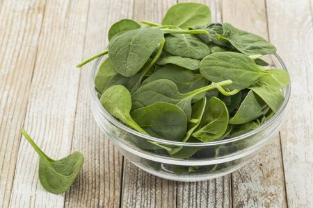 baby spinach: glass bowl of fresh baby spinach on a grunge white painted wood background