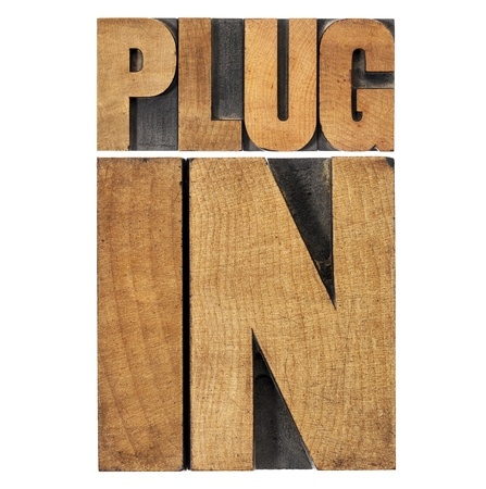 plugin: plugin (plug-in)  - computer software component or application - isolated text in vintage letterpress wood type printing blocks
