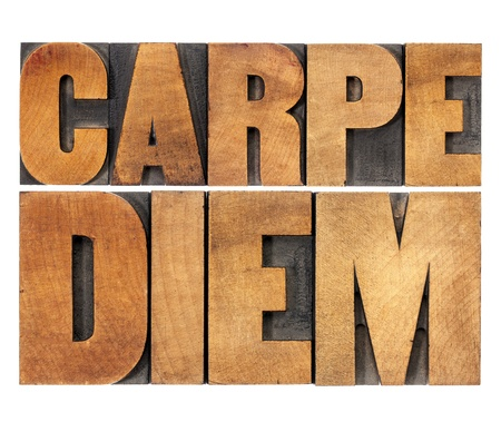 Carpe Diem  - enjoy life before it is too late, existential cautionary Latin phrase by Horace - isolated text in vintage letterpress wood type printing blocks, scaled to rectangle Stock Photo - 19019510