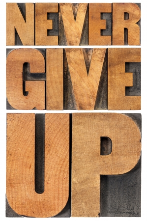never: never give up - isolated phrase in vintage letterpress wood type, scaled to rectangle