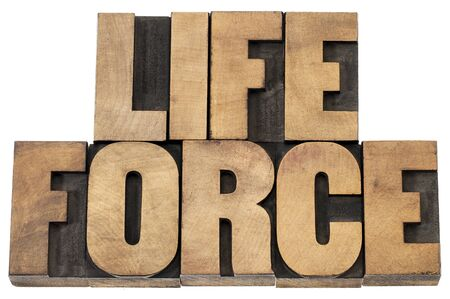 life force  - isolated text in letterpress wood type printing blocks Stock Photo - 19683978