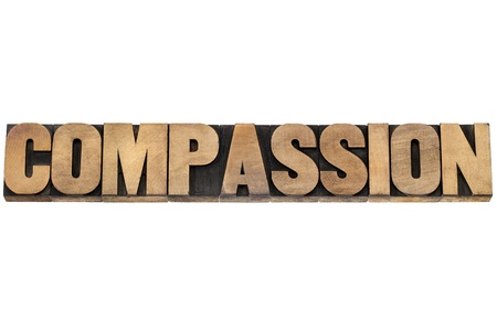 compassion word - isolated text in letterpress wood type printing blocks Stock Photo - 19683984