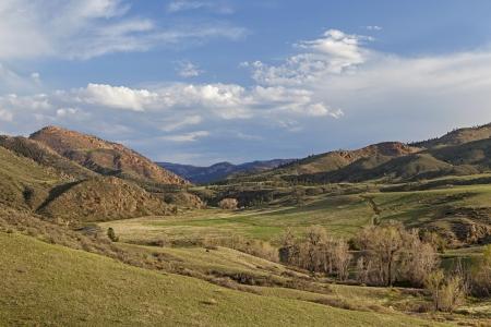 cache la poudre river: springtime in a mountain valley - Eagle Nest Rock Open Space near Livermore, Colorado