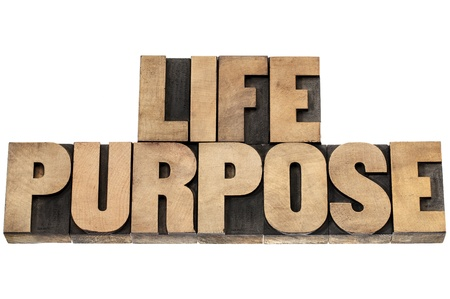 purpose: life purpose - isolated text in letterpress wood type Stock Photo