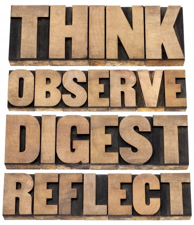 reflect: think, observe, digest, reflect - a set of motivational words  - isolated text in letterpress wood type
