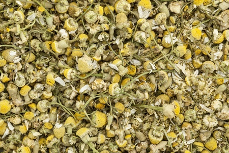 background of organic chamomile herbal tea Stock Photo - 20440004